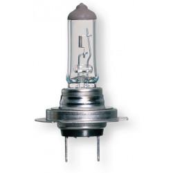 lampadina h7  premium line